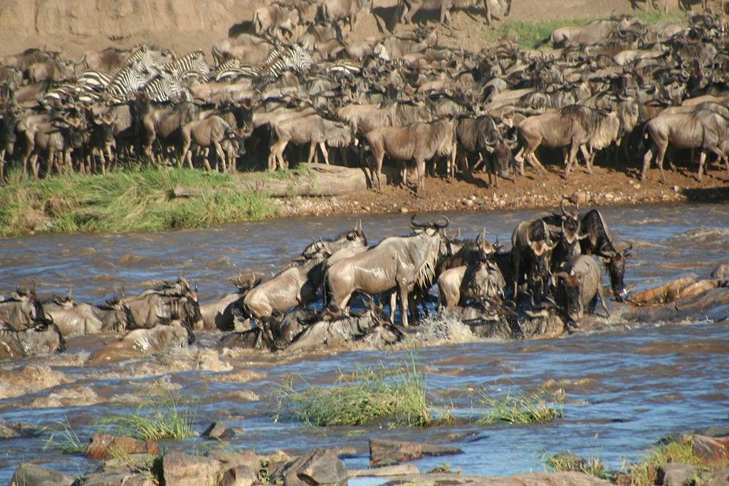 Tanzania Travel Guide 1