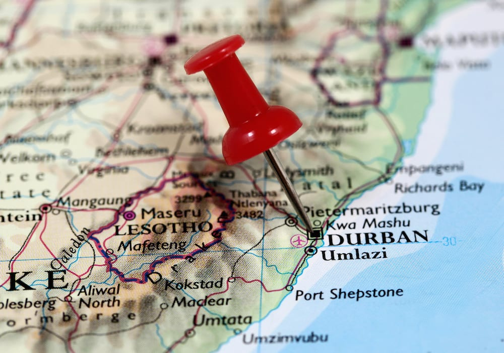Durban's Influence on South African Food - Demand Africa