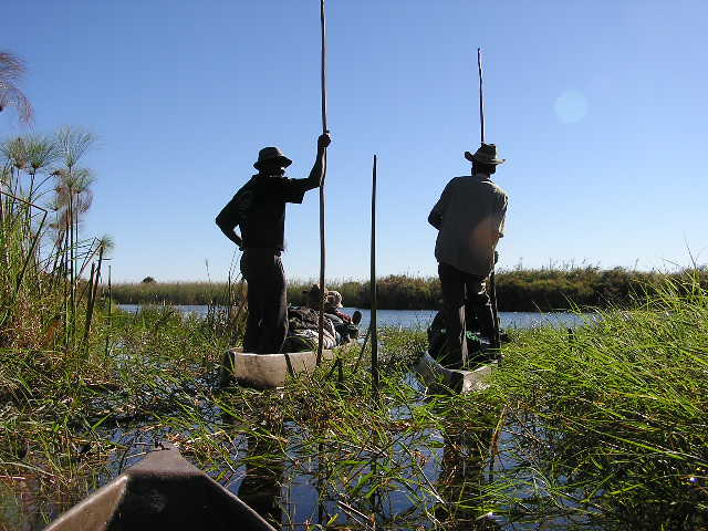 Botswana Travel Guide Image 8