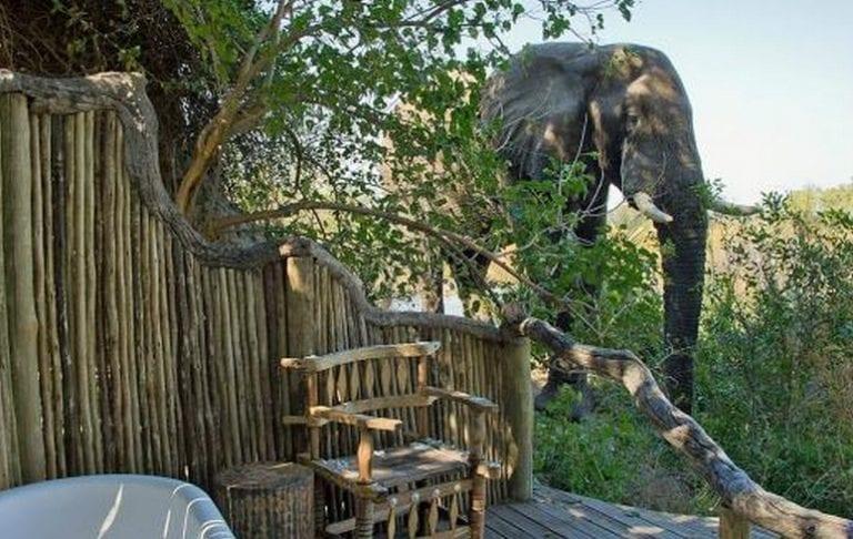 04luxury safari lodge luxury lodge