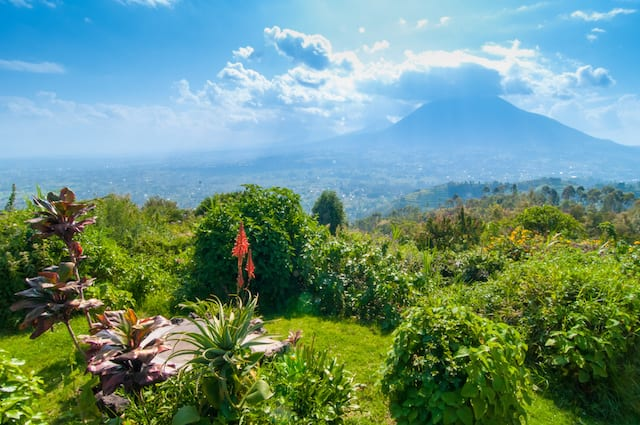 Rwanda Travel Guide Hills