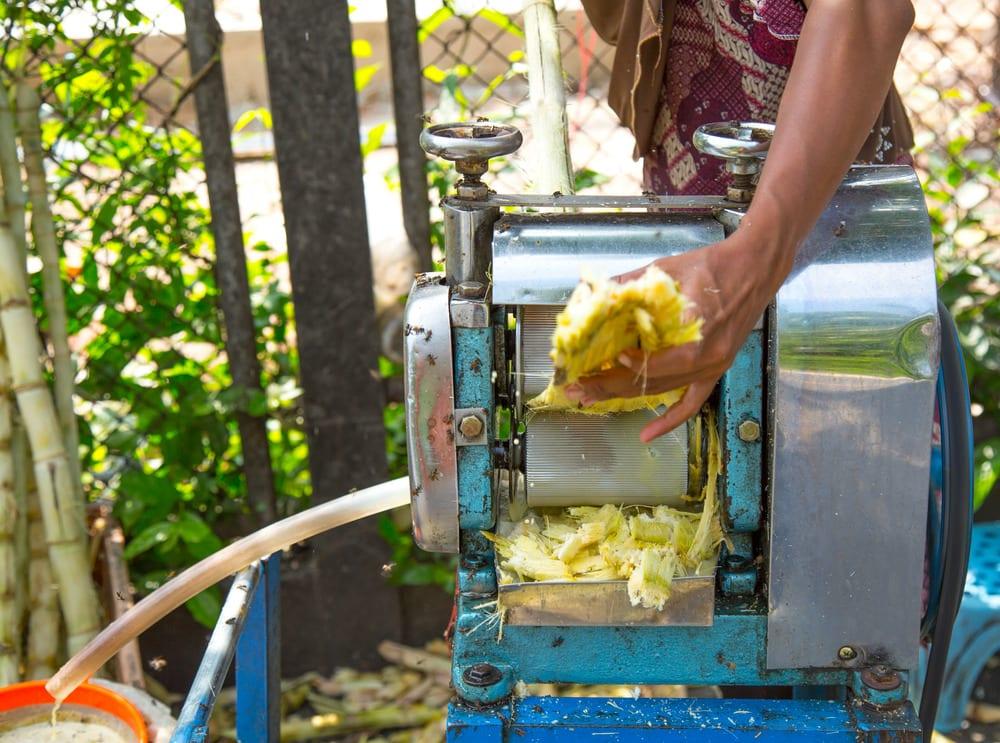 mauritius dishes from mauritius sugarcane juice