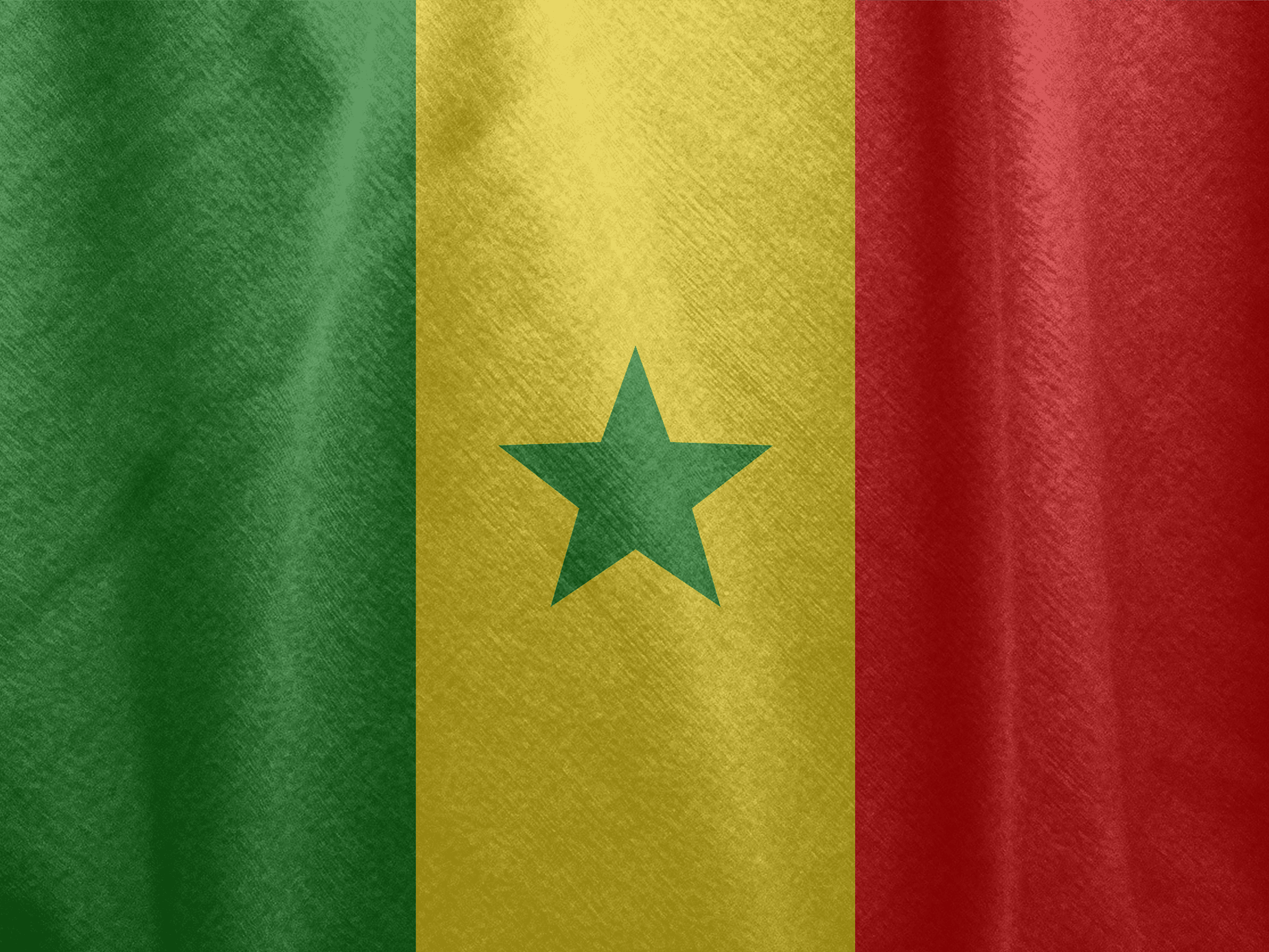 Senegal Flag Fabric